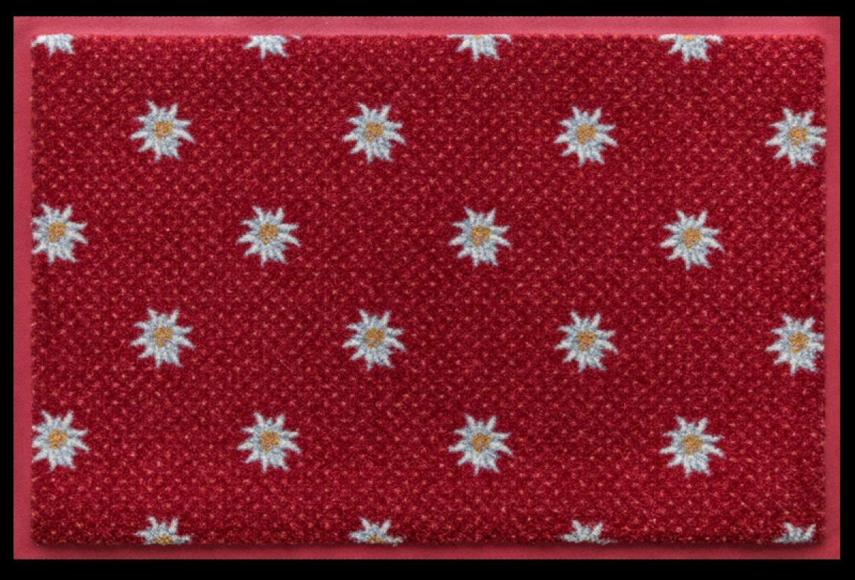 Edelweiss C