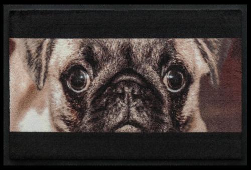 Fußmatte Bulldogge