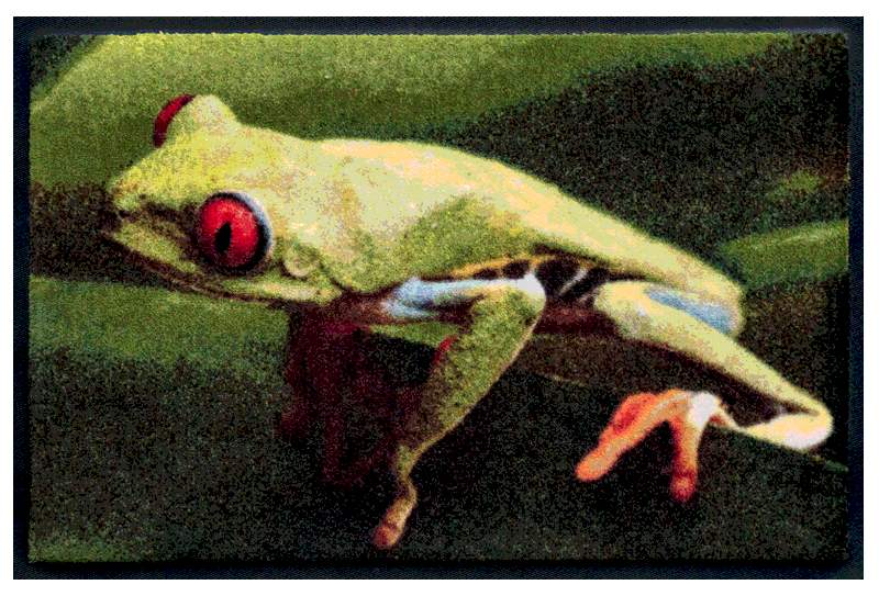 Fußmatte Frosch mit roten Augen
