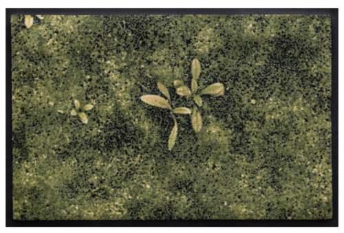 Fußmatte Fauna 1