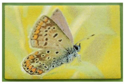 Fußmatte Butterfly